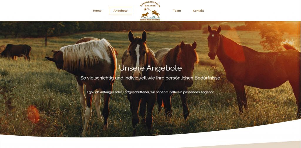Webdesign Pferdezentrum Balance Angebote